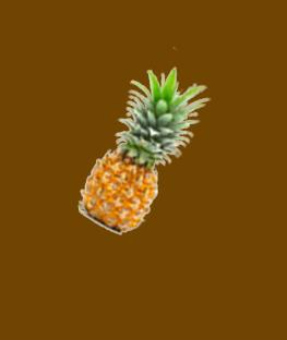 joyday dengan nanas 3